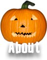 about us pumpkin