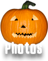 photos pumpkin